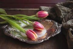 Tulipanes rosados en la bandeja de plata Fotos de archivo