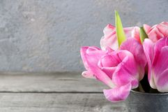 Tulipanes rosados en taza del metal del vintage Foto de archivo