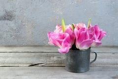 Tulipanes rosados en taza del metal del vintage Fotografía de archivo libre de regalías