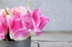 Tulipanes rosados en taza del metal del vintage Fotografía de archivo