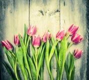 Tulipanes rosados en viejo fondo de madera Imagenes de archivo