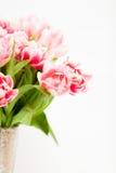 Tulipanes rosados frescos en florero contra el fondo blanco Fotografía de archivo libre de regalías