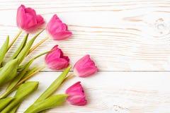 Tulipanes rosados frescos en un fondo de madera blanco Fotografía de archivo