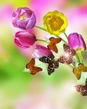 Tulipanes rosados y amarillos de las flores Imagen de archivo