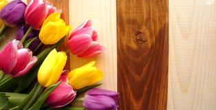 Tulipanes sobre la tabla de madera Fotos de archivo libres de regalías