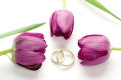 Tulipanes y anillos Imágenes de archivo libres de regalías