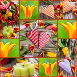 Tulipanes y collage de los corazones Imágenes de archivo libres de regalías
