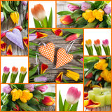 Tulipanes y collage de los corazones Imagenes de archivo