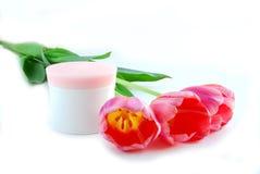 Tulipanes y crema Fotos de archivo
