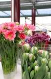 Tulipanes y floreros Foto de archivo libre de regalías