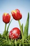 Tulipanes y huevos de Pascua Fotos de archivo