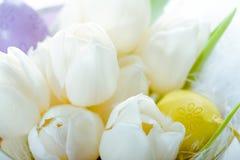 Tulipanes y huevos de Pascua coloridos fotografía de archivo