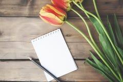 Tulipanes y libreta Imagenes de archivo
