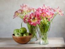 Tulipanes y manzanas Imágenes de archivo libres de regalías
