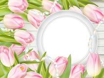 Tulipanes y marco del blanco del espacio en blanco EPS 10 Imágenes de archivo libres de regalías