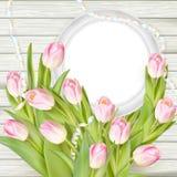 Tulipanes y marco del blanco del espacio en blanco EPS 10 Fotos de archivo libres de regalías