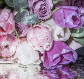 Tulipanes y rosas rosados delicados Imagen de archivo