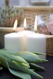 Tulipanes y velas   Imagen de archivo libre de regalías