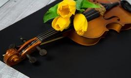 Tulipanes y violín Foto de archivo