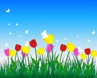 Tulipani illustrazione di stock
