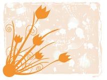 Tulipani arancioni Grungy Fotografia Stock Libera da Diritti