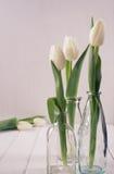 Tulipani bianchi su fondo di legno bianco Fotografia Stock Libera da Diritti