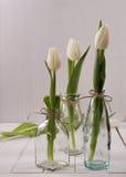 Tulipani bianchi su fondo di legno bianco fotografia stock