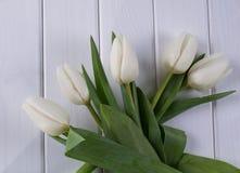 Tulipani bianchi su fondo di legno bianco Immagine Stock Libera da Diritti