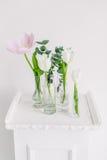 Tulipani in bottiglie sullo studio bianco del fondo Immagini Stock Libere da Diritti