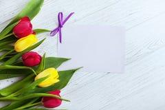 Tulipani colorati e fondo di legno bianco Il congratu di concetto Fotografia Stock Libera da Diritti