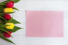Tulipani colorati e fondo di legno bianco Il congratu di concetto Immagine Stock