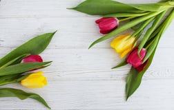 Tulipani colorati su un fondo di legno bianco Festa di concezione, Fotografia Stock Libera da Diritti
