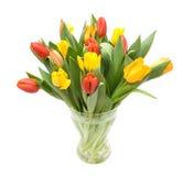 Tulipani Colourful Fotografie Stock Libere da Diritti