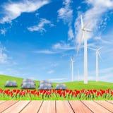 Tulipani con il generatore eolico ed i pannelli solari sul campo di erba verde a Fotografia Stock
