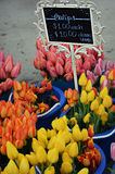 Tulipani da vendere Fotografia Stock Libera da Diritti