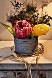 Tulipani dei fiori in un vaso Fotografia Stock Libera da Diritti