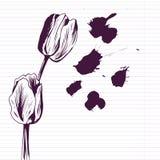 Tulipani del disegno dell'inchiostro illustrazione vettoriale