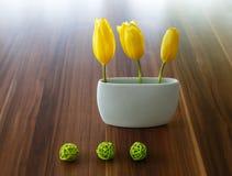 Tulipani della primavera Fotografia Stock
