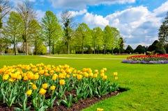 Tulipani della primavera nel giardino del Hampton Court, Londra, Regno Unito fotografia stock libera da diritti