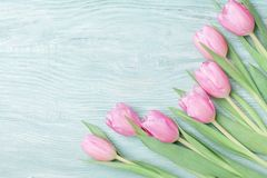 Tulipani della primavera per l'8 marzo, il giorno internazionale di madri o della donna Bella cartolina d'auguri Vista superiore Immagini Stock