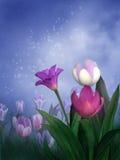 Tulipani della sorgente Fotografia Stock