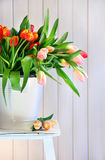 Tulipani della sorgente su un vecchio banco fotografie stock