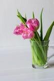 Tulipani dentellare su priorità bassa bianca Immagine Stock Libera da Diritti