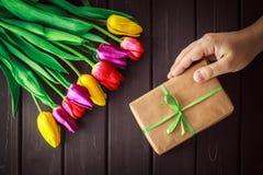 Tulipani di colore differente su fondo di legno Fotografia Stock
