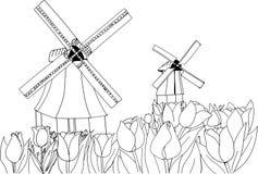 Tulipani di fioritura sui precedenti dei mulini a vento Paesaggio dell'Olanda Immagine Stock Libera da Diritti