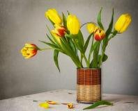 Tulipani di giallo del mazzo di natura morta Fotografie Stock Libere da Diritti