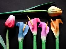 Tulipani di legno Fotografia Stock Libera da Diritti