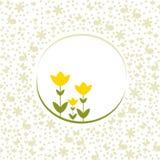 Tulipani di Pasqua e modello del fondo Fotografia Stock Libera da Diritti