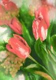 Tulipani di rosso di tiraggio o dell'acquerello illustrazione di stock