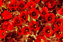Tulipani di tocco di seppia con i petali brunastri rossi e le foglie gialle Fotografia Stock Libera da Diritti